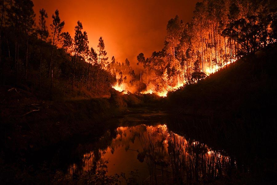 葡萄牙中部17日爆發森林大火,是該國近年來最嚴重的森林大火,已知有60處森林起火,當局已投入1700名消防員撲救,鄰國西班牙也派出2架滅火飛機投水救援。(PATRICIA DE MELO MOREIRA/AFP/Getty Images)