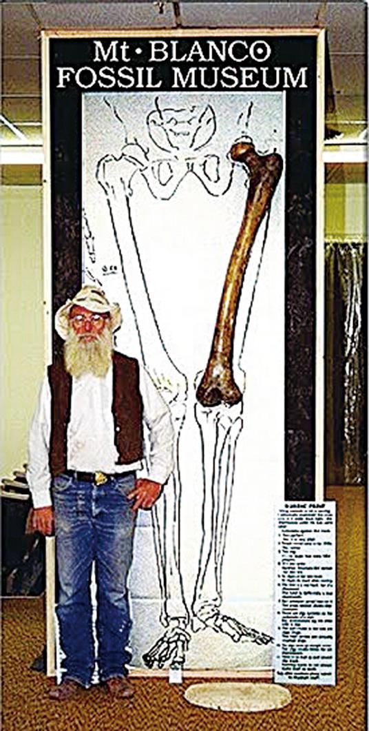 美國德州Mt.Blanco Fossil Museum博物館收藏的1.2米長的大腿骨,據推算這腿骨來自5米高的巨人。(網絡圖片)