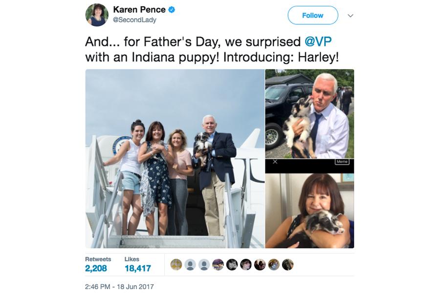 星期一(6月19日),副總統的住所「美國海軍天文台」(United States Naval Observatory),多了兩個均是四條腿的新居民:一隻貓和一隻狗。(第二夫人Twitter圖片)