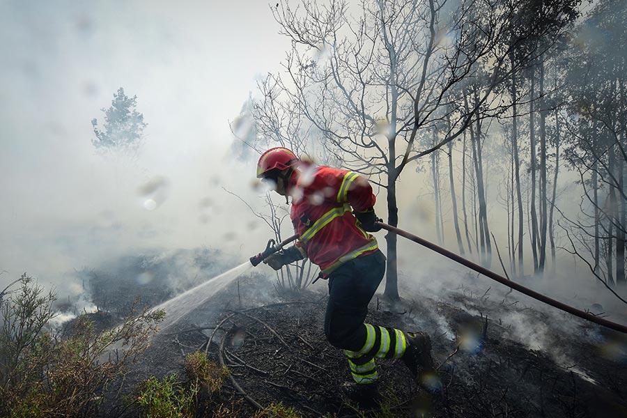 2017年6月20日,消防人員正在葡萄牙瓦萊迪坎布拉努力撲滅山火。(MIGUEL RIOPA/AFP/Getty Images)