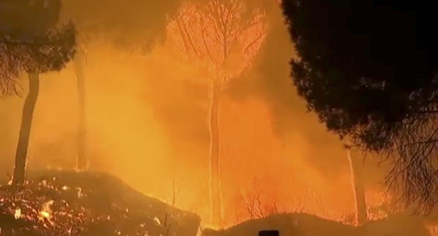 西班牙南部在當地時間周六(24日)晚間也發生森林大火,已蔓延至歐洲最重要的「多尼亞納國家公園」。(視像擷圖)