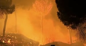 西班牙森林大火延燒 逾千五人被迫撤離