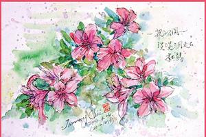 【彩繪生活】(319)初夏的風