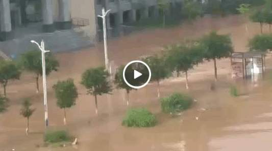廣西師範大學雁山校區部份路段被水淹。(視像擷圖)