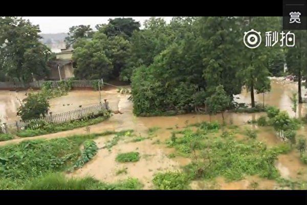 暴雨肆虐後的長沙。(視像擷圖)