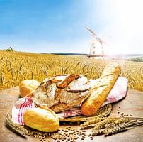 【研 究】全榖物食品 能減少心血管疾病風險