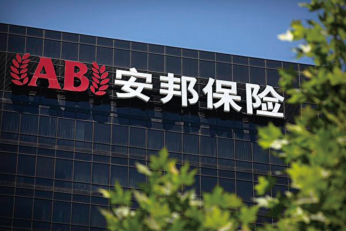 安邦保險公司6月13日公開確認,吳小暉上周已被帶走,並稱吳小暉的職位責任已經由他人代理。(加通社)
