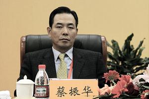 蔡振華未當選十九大代表的背後
