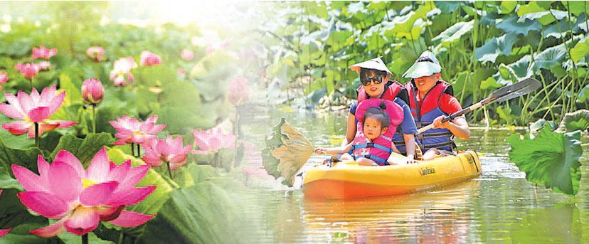 扶餘薯童蓮花節 圖片來源:南韓觀光公社