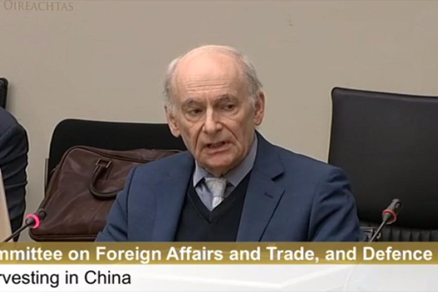 7月6日,愛爾蘭議會舉行「中共活摘法輪功學員器官」發佈會,國際人權律師麥塔斯在議會中發言。(視像擷圖)