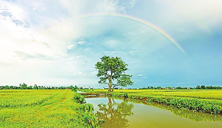 【醫山夜話】 彩虹升起在雨中