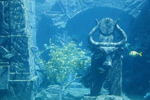 揭開史前文明的面紗(16)