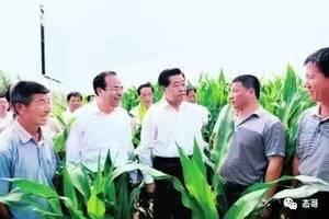 謝天奇:孫政才案牽連四常委 一張合照鎖定賈慶林