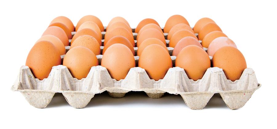 新鮮的雞蛋如何分辨?