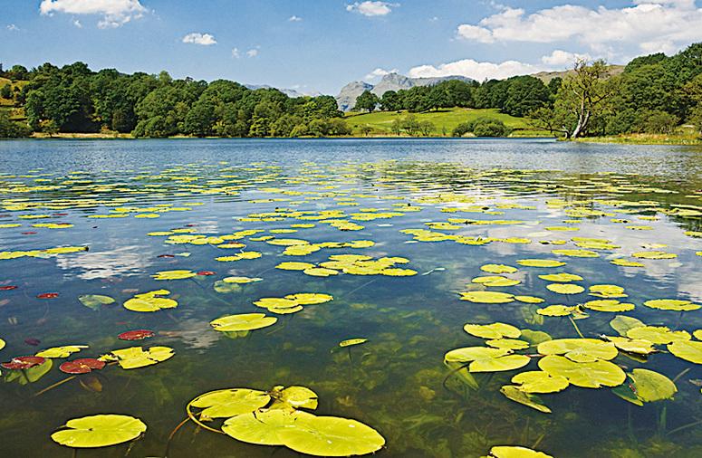 英國湖區美麗的湖泊。(Fotolia)