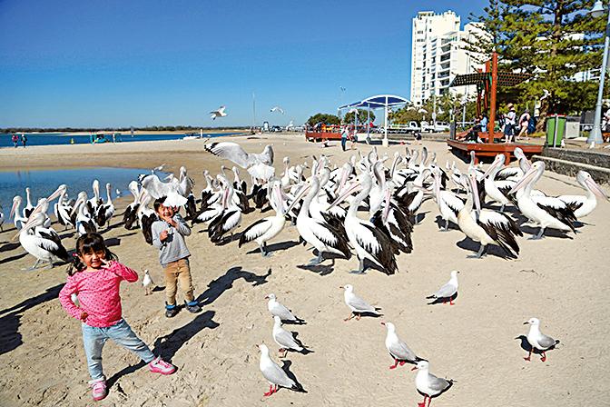 走遍世界各地,謙謙說最鍾意澳洲。(受訪者提供)