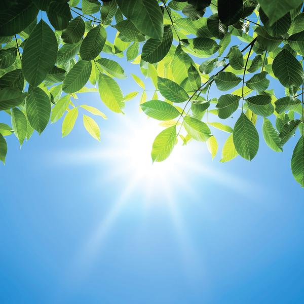 為甚麼一年中最熱的日子 稱為「三伏天」