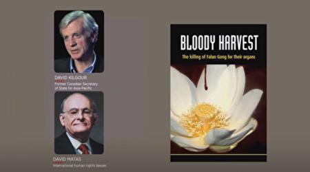 2006年,大衛喬高與大衛麥塔斯出版了調查報告《血腥的器官摘取》(Bloody Harvest)。(影片擷圖)