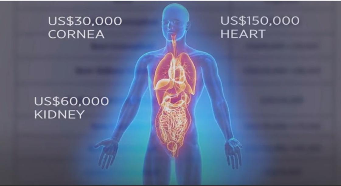 「中國國際器官移植網絡輔助中心」在其網頁列出了針對外國病人的器官價格——心臟15萬美元,腎臟6萬美元,眼角膜3萬美元。(影片擷圖)