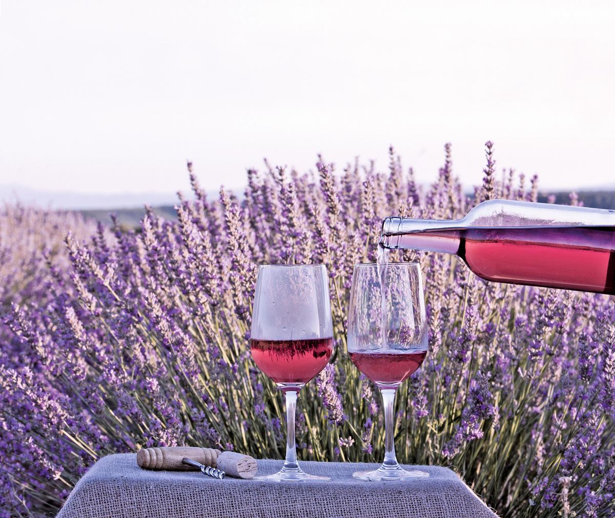 法國的Provence是露茜酒的經典產釀地。