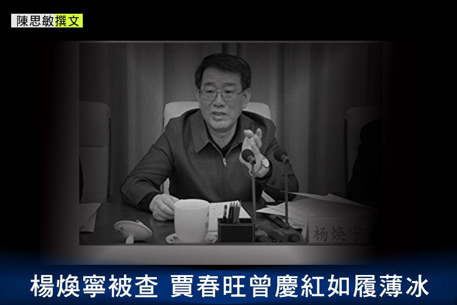 楊煥寧終究沒能最後過關,在「十九大」前被重重拋出。(網絡圖片)