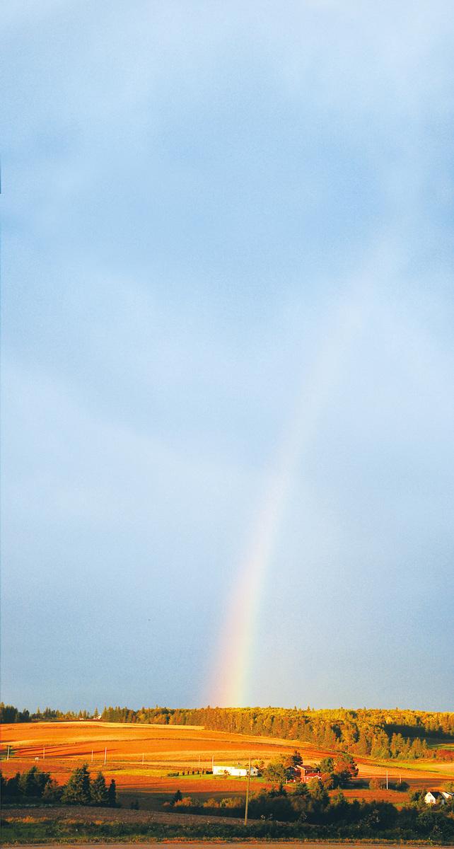 愛德華王子島的彩虹。(維基百科公共領域)
