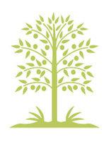 天然趨勢:回歸傳統 綠色生物科技 真材實料