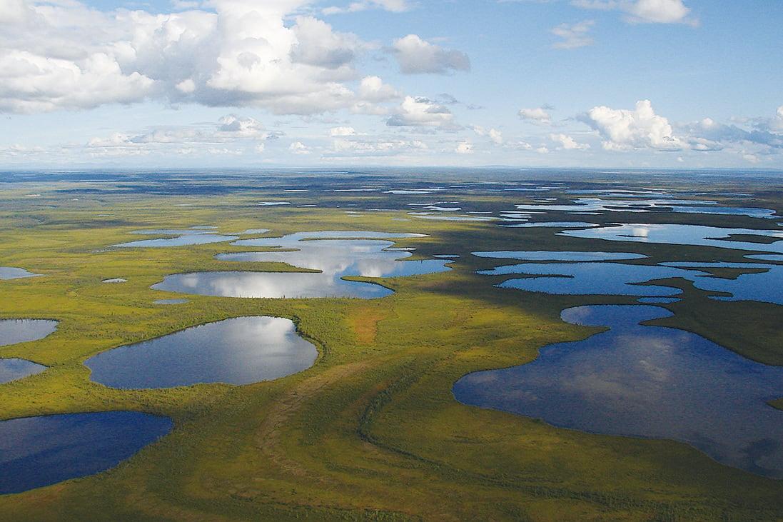 育空的溫圖特國家公園原始純淨。(Chris Kyrzyk/Wikipedia)