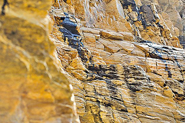 不丹只有極少數人有採集喜來芝執照,冬天天氣非常穩定,是最適合採集的季節,也適合攀岩活動。(Dakini提供)