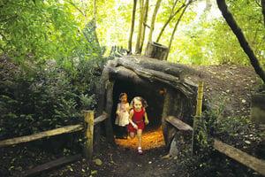樹屋完美假日 在英國尋找兒時的夢 ——Tree House