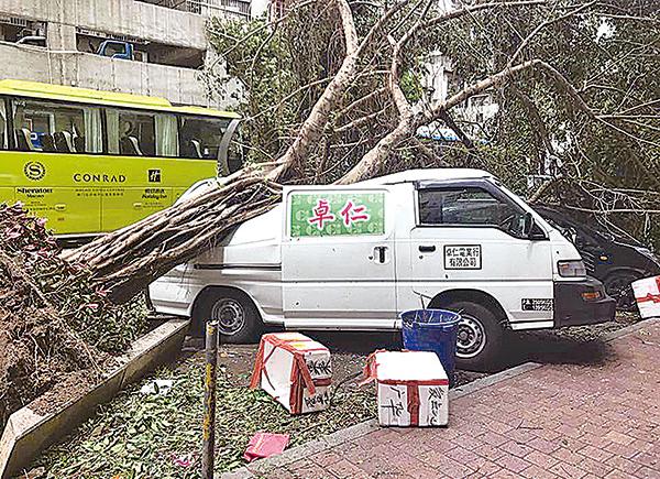 市面有車輛被大樹壓毀仍未清理。(澳門危險駕駛fb、Getty Images)