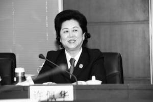 廣東省高院執行局前局長許佩華被立案審查