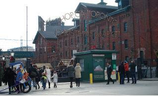 北美東岸今年均出現「暖冬」現象,有大量港人移民的加拿大多倫多,預計今年將不會有「白色聖誕」。(中央社)