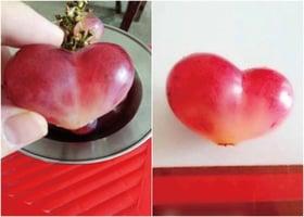 【圖片新聞】概率十萬分之一 湖北女買到心形葡萄
