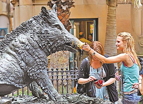 人許下的願望常常和習慣的養成有關,但是很少人能真的養成好習慣。圖為悉尼醫院前一野豬雕像的噴水池,一遊客邊摩擦豬鼻邊許下心願。(AFP)