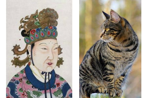 畏貓的武則天身邊卻有一位號為「人貓」的大奸臣李義府。(維基百科、Pixabay/大紀元合成)