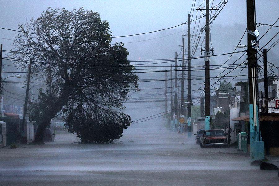 圖為颶風艾瑪吹襲波多黎各的情境。(Jose Jimenez/Getty Images)