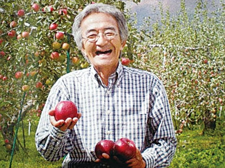 日本農夫木村秋則把每棵蘋果樹當成一個生命,灌注愛心,與之對話,以正能量幫助蘋果樹成長結果,最終創造出木村農法奇蹟。(網絡圖片)