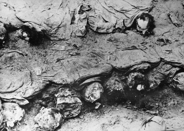 1943年卡廷屍體發掘現場。照片由波蘭紅十字會拍攝。(公有領域)