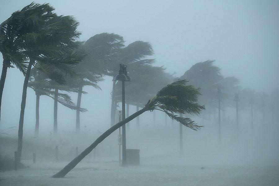 颶風艾爾瑪在星期天早上登陸佛羅里達州,晚間行進到邁爾斯堡,給佛州帶來大雨和狂風。(Chip Somodevilla/Getty Images)