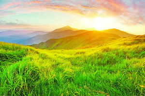 書摘:《山牧之愛》 現代牧人的四季日常 還有他的羊(4)