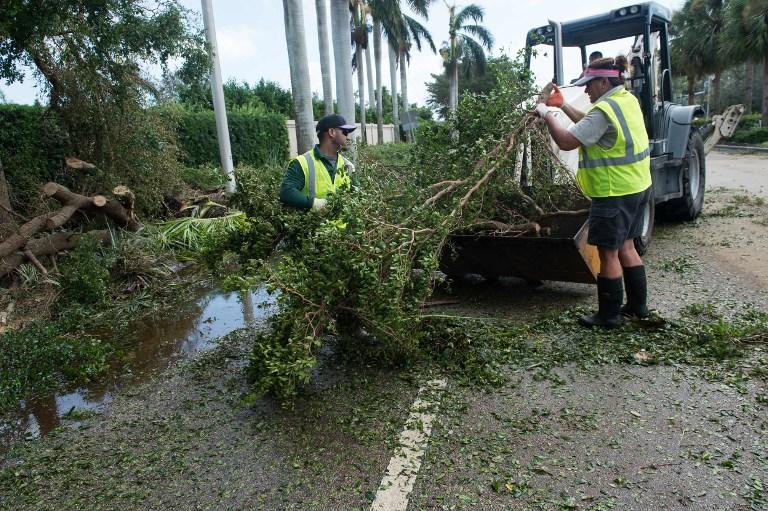 9月11日佛羅里達州那不勒斯的工人清理倒下的樹木。(AFP PHOTO/NICHOLAS KAMM)