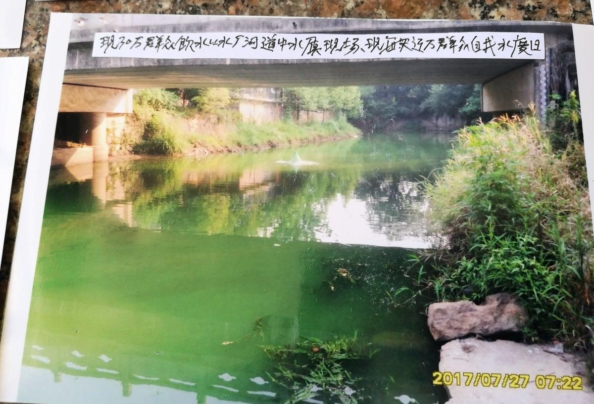 浙江省湖州市長興縣300噸病死豬被掩埋在大銀山,同一個縣的夾浦鎮,很多人因飲用被污染的水而死於癌症。圖為夾浦鎮的水。(知情人提供)