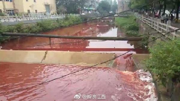 江西九江學院河道出現「血水」 腥臭味瀰漫