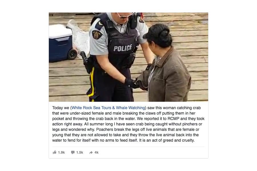華裔大媽在加拿大捕蟹,被警察搜身。(視像擷圖)