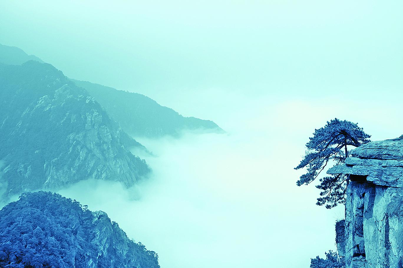 松樹在懸崖上,雲霧廬山(Fotolia)