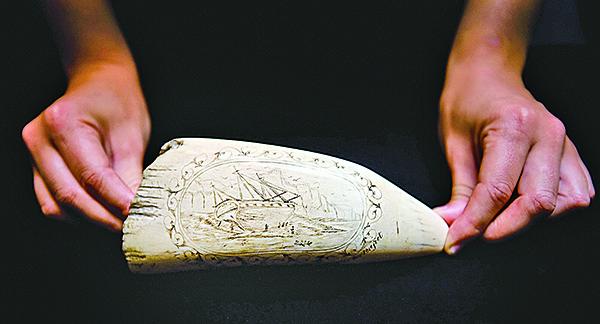 關於達爾文搭乘小獵犬號進行探險的事跡,被刻寫在這顆鯨魚牙齒上。但這些歷史紀錄並無法解決達爾文理論的種種疏漏。(AFP)