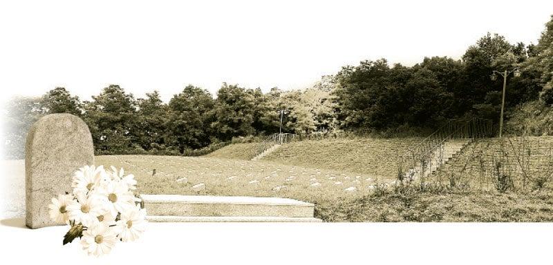 大韓民國京畿道坡州市的「敵軍墓地」埋葬著朝鮮戰爭期間死亡的中國軍人。(全宇/大紀元)