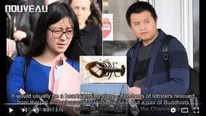 給龍蝦螃蟹放生 兩華人被罰1.5萬英鎊