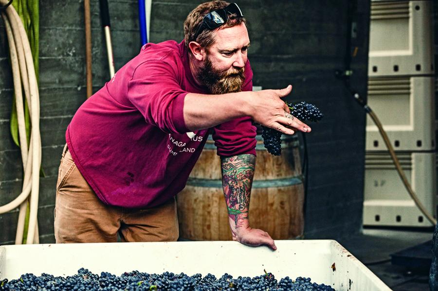 愛鑽研美食的釀酒師Matt Dumayne